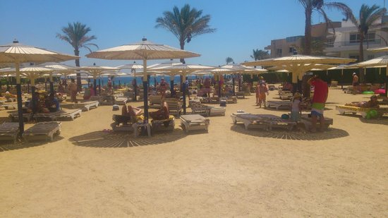 Hurghada SeaGull Beach Resort:                   .