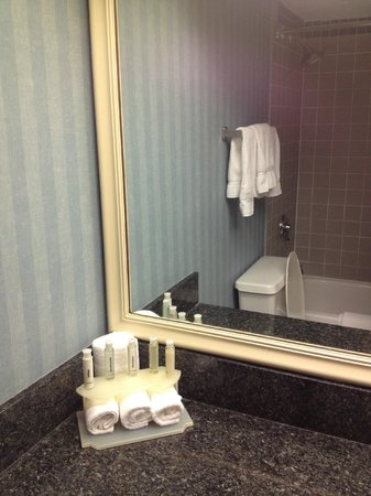 Comfort Inn Orlando/ Lake Buena Vista: Bathroom