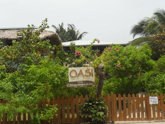 OASI: getlstd_property_photo