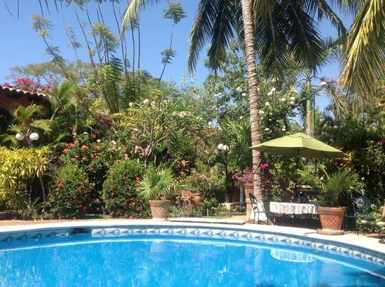 Suites La Hacienda:                   Poolside Vista