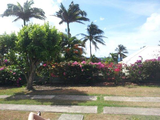 Residence Cocody :                   Giardini intorno al bungalow