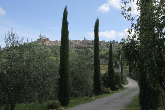 Agriturismo il Palazzo dei Diavoli:                   View of Montepulciano                 