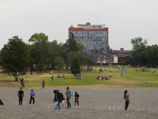 Ciudad Universitaria:                                     Université