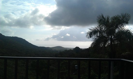 Ceiba Country Inn:                   View from the patio