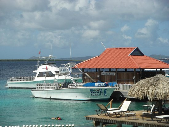 Divi Flamingo Beach Resort and Casino:                   Dive Boats