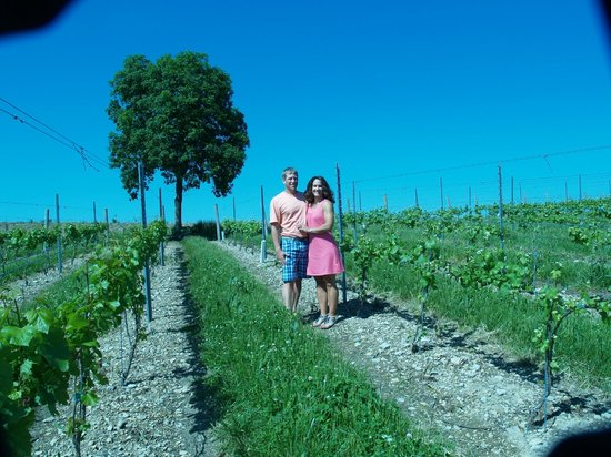 Fero Vineyards and Winery