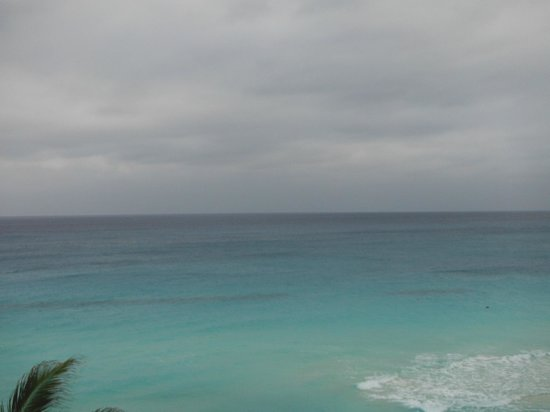Oleo Cancun Playa:                   Ocean view