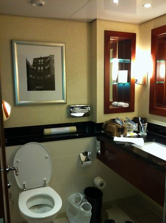 Amsterdam Marriott Hotel:                   Bathroom