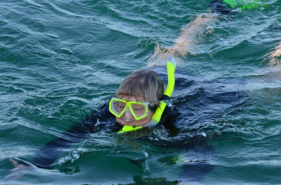Namaste' Eco Excursions:                   Carol checks to see what Trish has found.