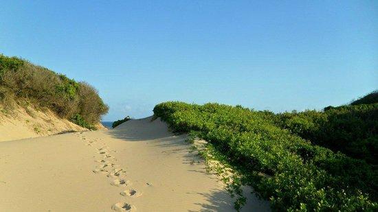 Dunes de Dovela eco-lodge:                   Düne