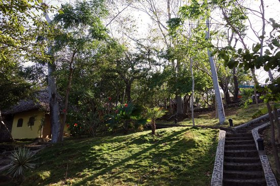 San Simian Eco Lodge:                   Gelände