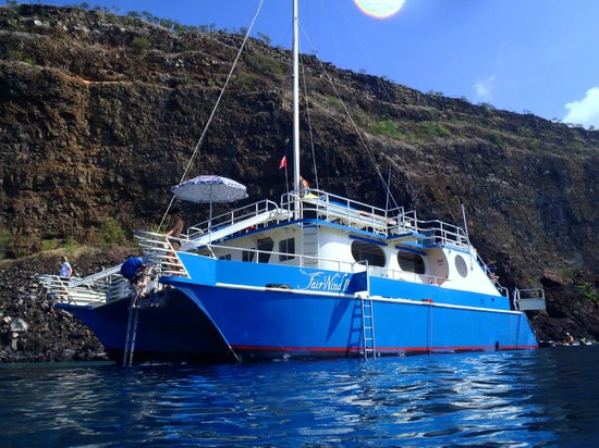 Fair Wind Big Island Ocean Guides:                                     Front of the boat, two slides off front and a diving platfor