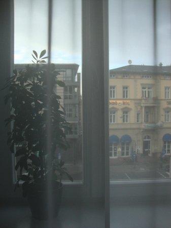 Bayrischer Hof:                   Window, I appreciated the flower