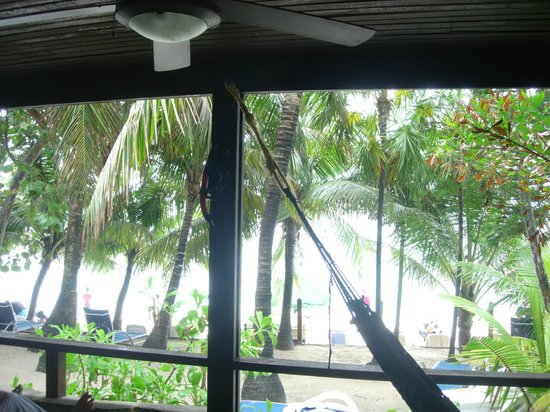 Bananarama Beach and Dive Resort: View from the porch