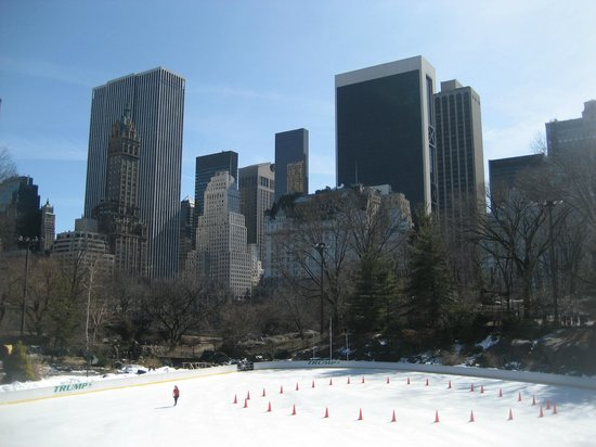 Trump Rink in Central Park:                   Wollman Rink