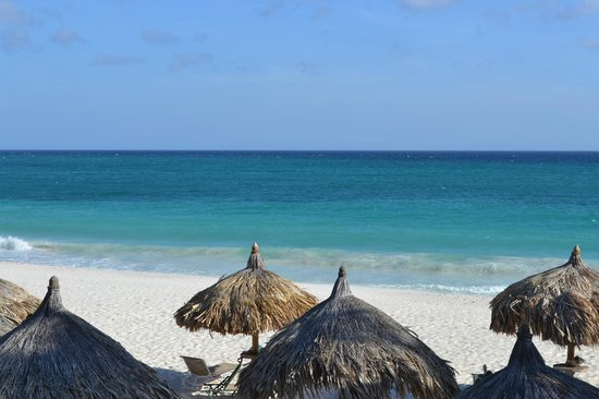 Divi Aruba All Inclusive:                   Pristine Beach