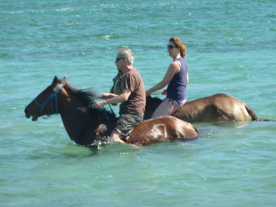 Nature's Paradise:                   Horseriding at Cas en Bas