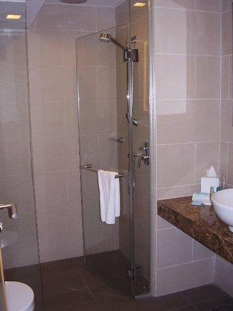 Novotel Singapore Clarke Quay:                   Bathroom