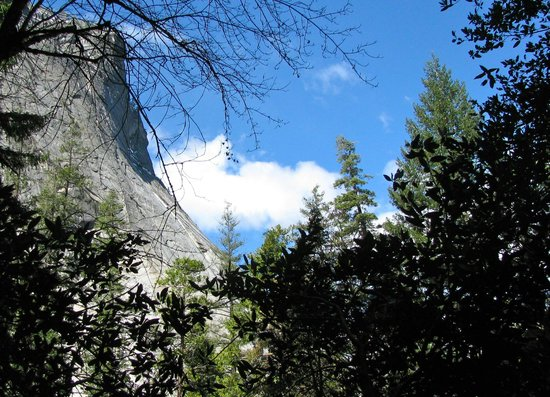 The Majestic Yosemite Hotel : On Vernal Falls trail