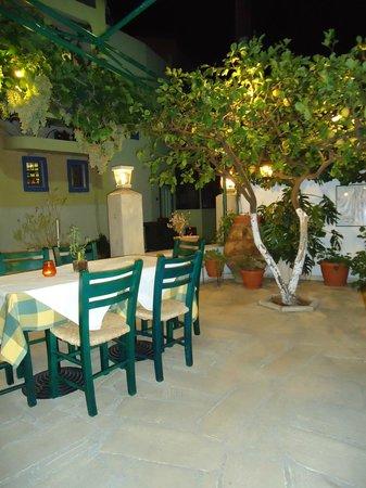 Petrino Garden:                   Lemon tree