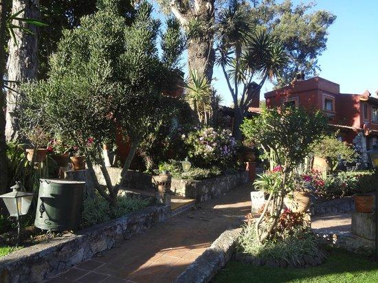 Villa San Jose Hotel & Suites:                   hotel garden