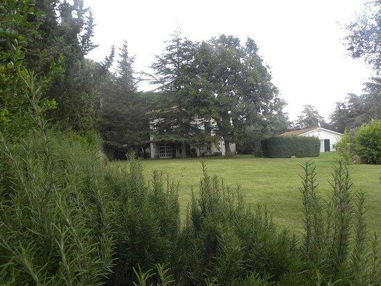 Ghiaccio Bosco: giardino in autunno