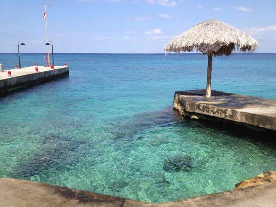 Scuba Club Cozumel:                   Front shore