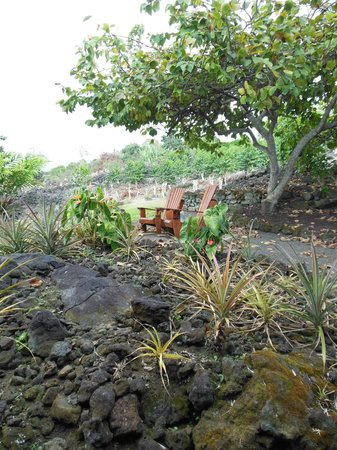 Holualoa Inn:                   little sitting area just up from the Coffee Cherry room...aweome view