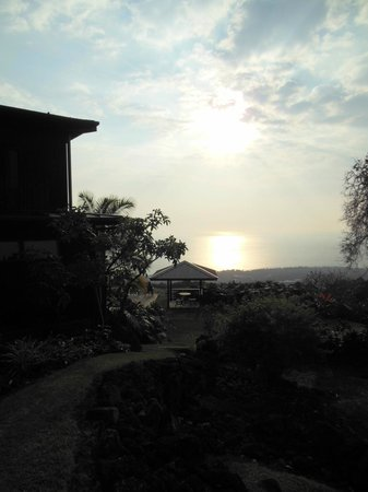 Holualoa Inn:                   the view!