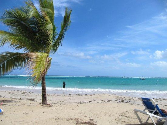ClubHotel Riu Ocho Rios:                   Beautiful beach
