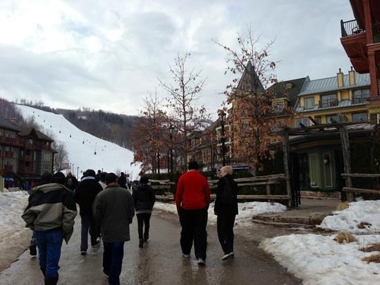 Ridge Runner Mountain Coaster : the village