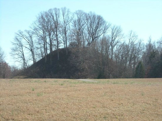 Pinson Mounds State Park: Saul's mound from a distance