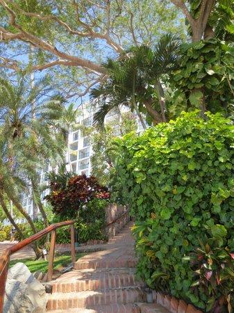 Hyatt Ziva Puerto Vallarta: grounds