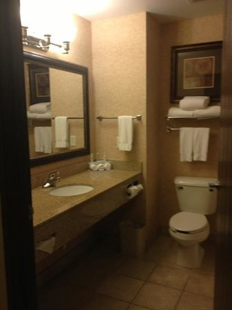 Holiday Inn Express Hotel & Suites Council Bluffs: bathroom