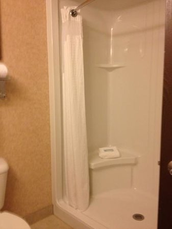 Holiday Inn Express Hotel & Suites Council Bluffs: shower