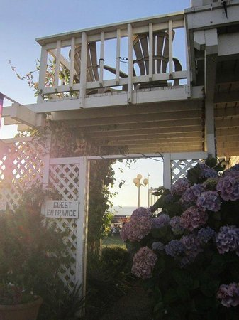 Cliff House Bed & Breakfast:                   Grounds