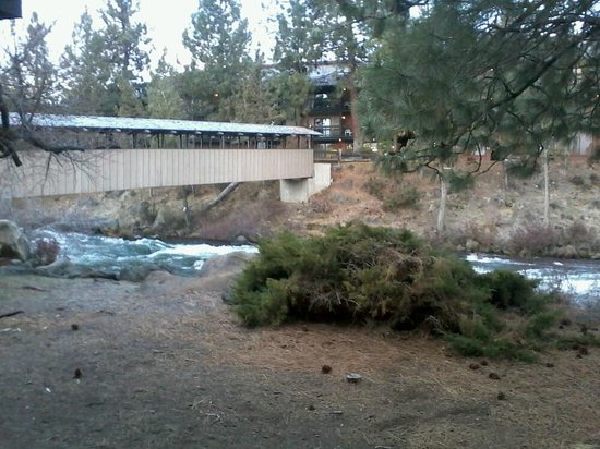 Riverhouse on the Deschutes:                   View from Rm 130