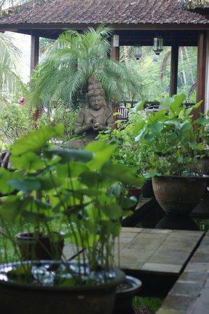 Villa Sarna Ubud:                   Garden outside common area                 