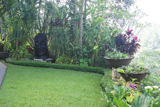 Villa Sarna Ubud:                   Garden outside reception