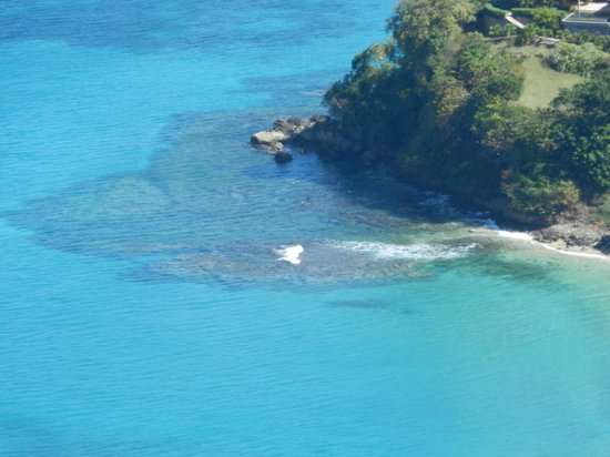 Kingsville Apartments :                   this where I snorkelled,  a short walk from Kingsville