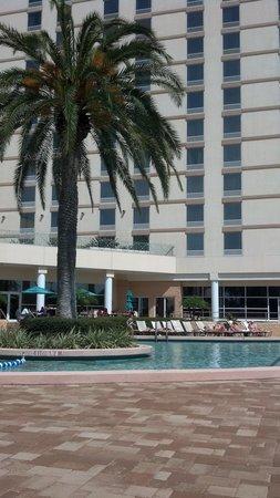 Rosen Plaza Hotel: poolside