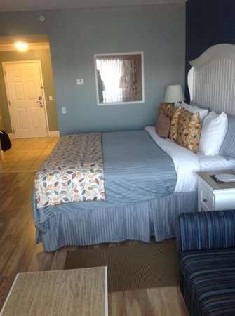 Watkins Glen Harbor Hotel:                   King bed deluxe room with sofa bed.