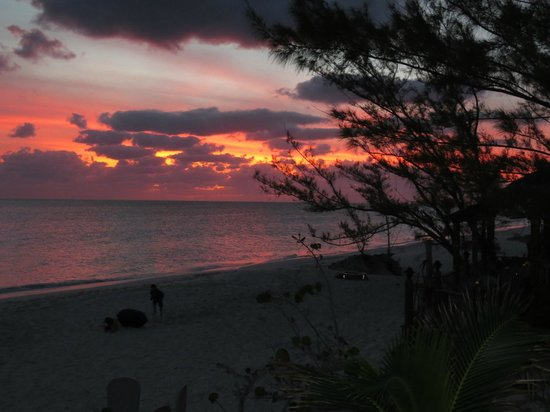 Pigeon Cay Beach Club:                   Sunset view from bar
