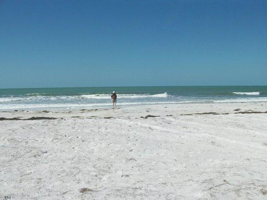 Camping Clearwater Beach Fl