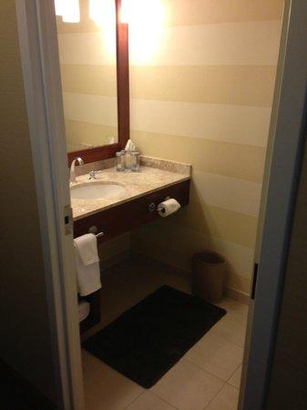 Renaissance Charlotte SouthPark Hotel: nice bathroom - decent size.