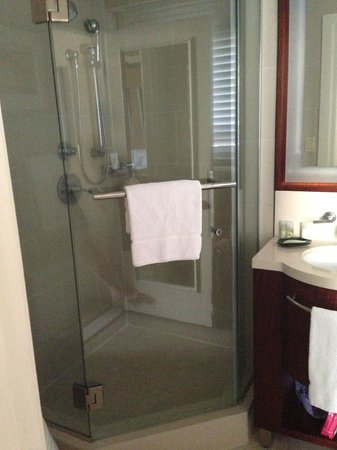 Moana Surfrider, A Westin Resort & Spa:                   Shower (obviously)