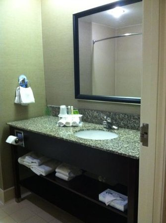 Holiday Inn Express & Suites Orangeburg: mirror and sink