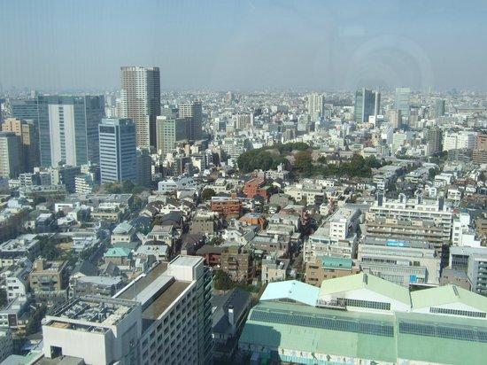 Shinagawa Prince Hotel Tokyo:                   View from room