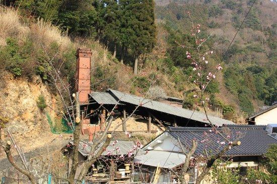 Ontayakino Sato :                   小鹿田の春。梅がキレイ