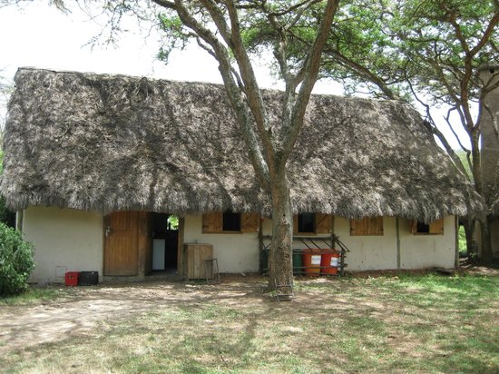 Kigio Wildlife Camp: Lodge grounds